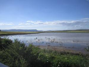 Laguna del saladar - Naturaleza en Almansa - Turismo en Almansa - Hostal el Estudio